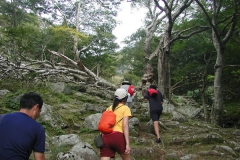 金華山にハイキング