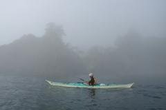早朝、霧の中を行く